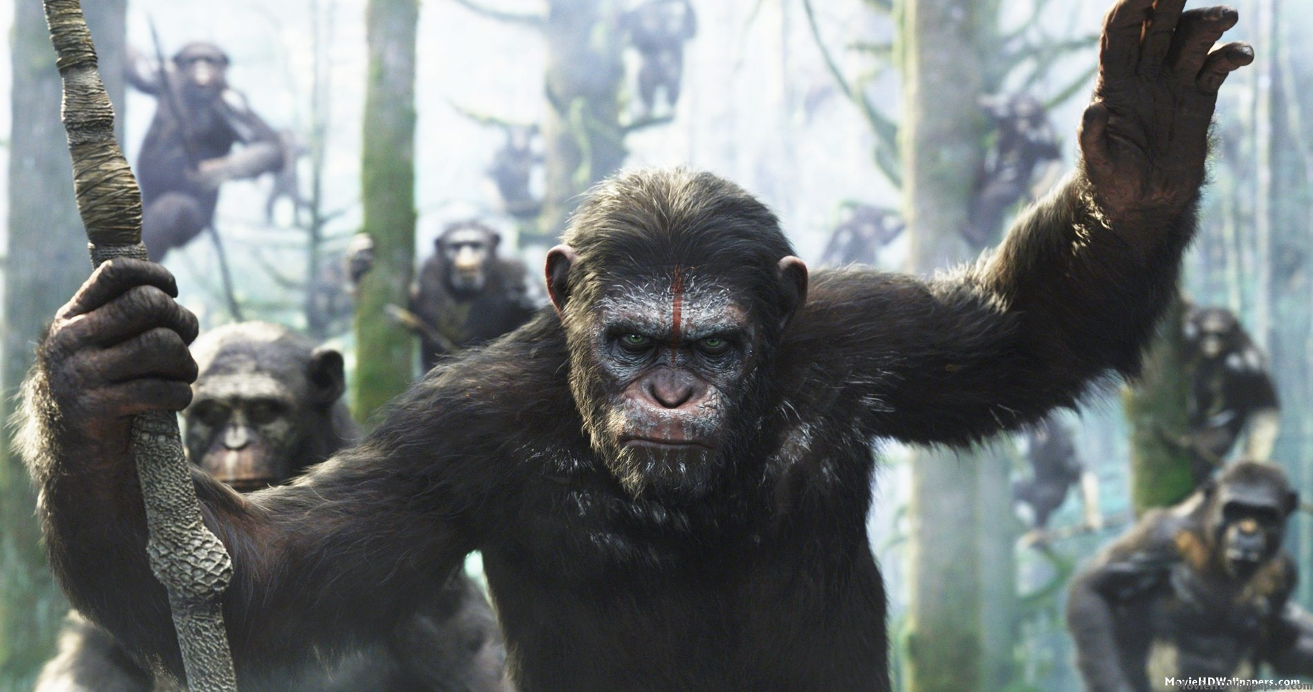Download Dawn of the Planet of the Apes full BLURAY movie 2014